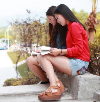 Exchange Students Program